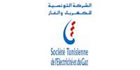 Société Tunisienne de l'Electricité et du Gaz